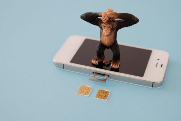 個人向けと法人向け格安SIMの違い